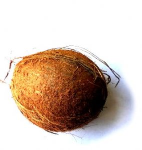 Fresh Coconut | Buy Online at the Asian Cookshop